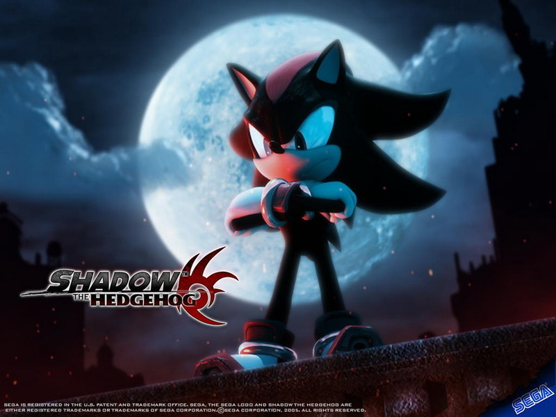 Shadow-The-Hedgehog video game